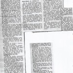 19770208 Febrero
